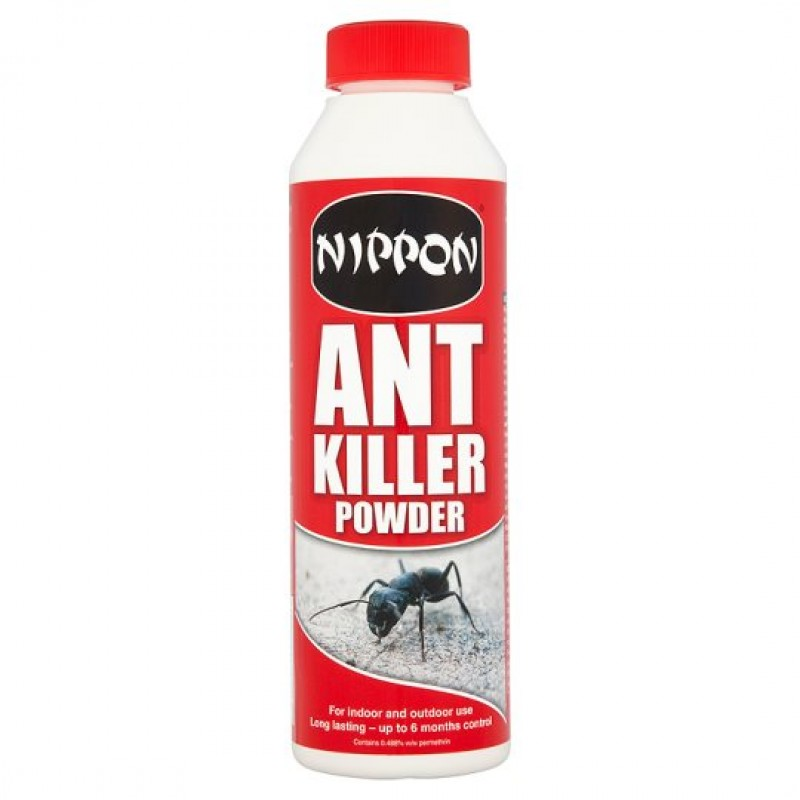 INSECT NIPPON ANT